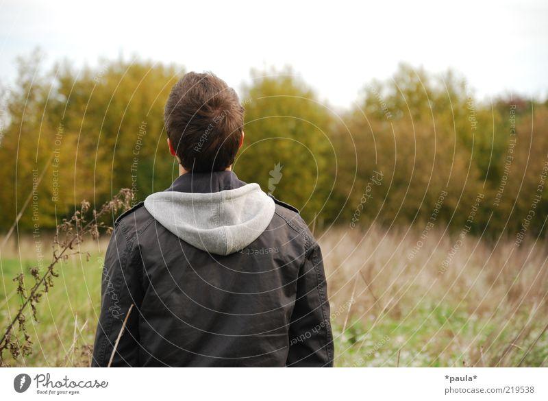 Ausschau halten... Mensch maskulin Junger Mann Jugendliche Kopf Haare & Frisuren Rücken 1 18-30 Jahre Erwachsene Landschaft Himmel Herbst Sträucher Jacke
