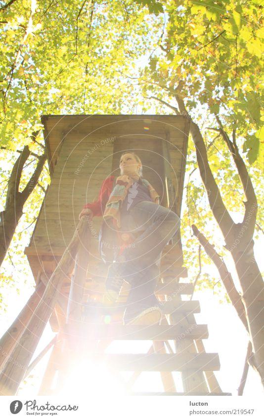 Goldener Oktober Mensch Himmel Natur Jugendliche grün Baum Sonne ruhig Erwachsene Wald Erholung Umwelt Herbst feminin Landschaft oben