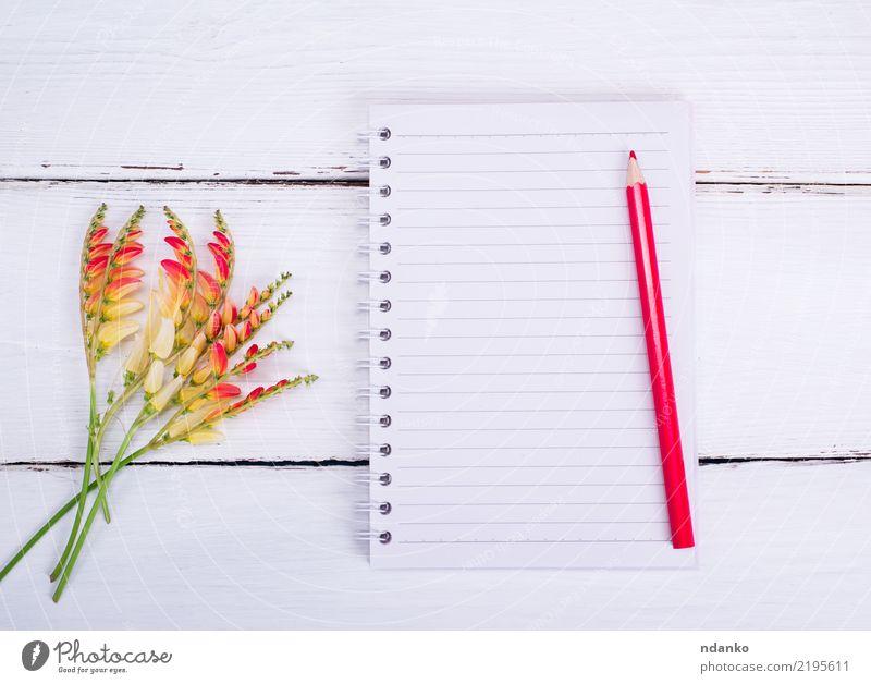 leeres Notizbuch in einer Linie Schule Büro Business Blume Papier Holz schreiben Sauberkeit gelb rot weiß Wissen Notebook Notizblock Page Hintergrund offen