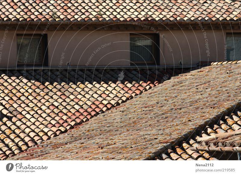 Über die Dächer.... Stil Häusliches Leben Haus alt ästhetisch Dach Fenster Dachziegel Dachgiebel Dachüberhang Dachgeschoss südländisch mediterran Ton Spanien