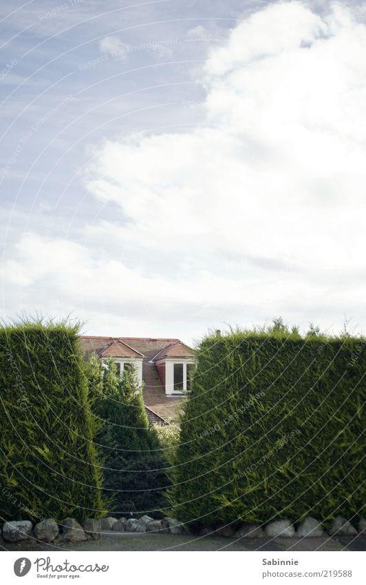 Peek a Boo Himmel grün blau rot Sommer Haus Wolken Fenster Garten Stein Architektur Ordnung Dach Häusliches Leben Reichtum
