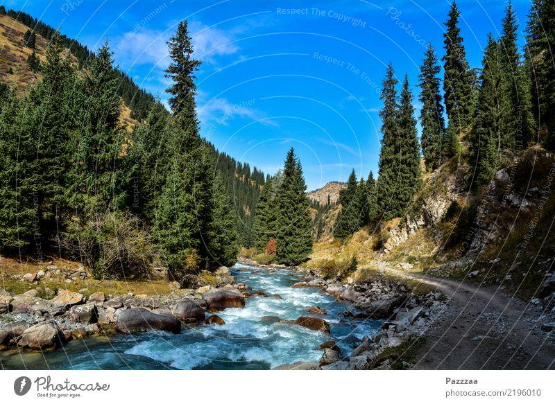 Kirgisische Idylle Natur Wasser Erholung Wald Berge u. Gebirge Umwelt natürlich Freiheit Ausflug wild wandern Abenteuer entdecken Hügel Schlucht