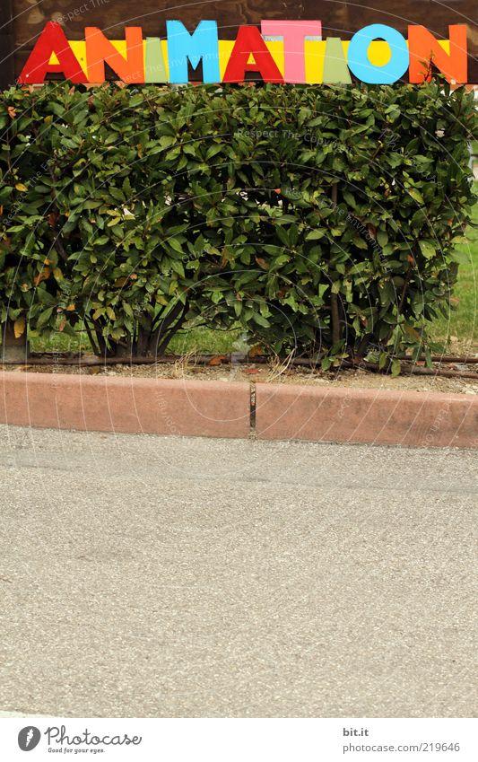 ANIMATION Freizeit & Hobby Sommer Sommerurlaub Pflanze Sträucher Grünpflanze Schriftzeichen Schilder & Markierungen mehrfarbig Ferien & Urlaub & Reisen Teamwork