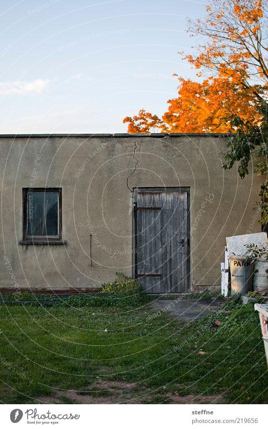 Schuppen alt Himmel Baum Haus Wiese Herbst Wand Fenster Gras Mauer Tür Armut Fassade authentisch Müll Schönes Wetter