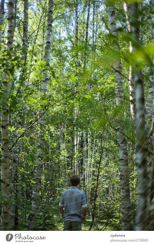 Grünes Rauschen Lifestyle Stil Gesundheit Leben Wohlgefühl Zufriedenheit Erholung ruhig Meditation Ausflug Freiheit wandern Mensch Rücken Umwelt Natur Sommer