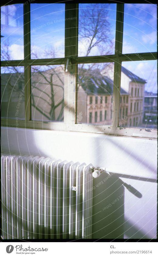 fenster und heizung Häusliches Leben Wohnung Raum Schönes Wetter Baum Düsseldorf Stadt Haus Gebäude Mauer Wand Fenster Heizung analog Fensterblick Altbauwohnung
