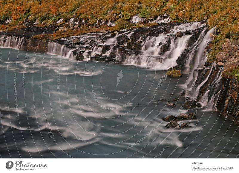 Hraunfossar Natur Landschaft Urelemente Wasser Felsen Küste Insel Island Hvítá Reykholt Westisland Wasserfall Wassermassen fallen bedrohlich Bekanntheit