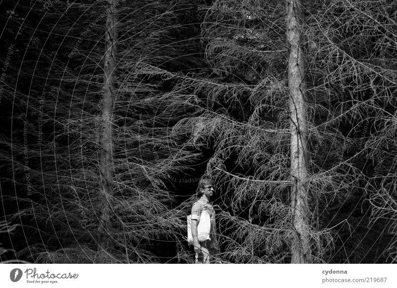BLACK I Stil ruhig Ausflug Mensch Junger Mann Jugendliche 18-30 Jahre Erwachsene Umwelt Natur Baum Wald ästhetisch Einsamkeit Ende Endzeitstimmung geheimnisvoll