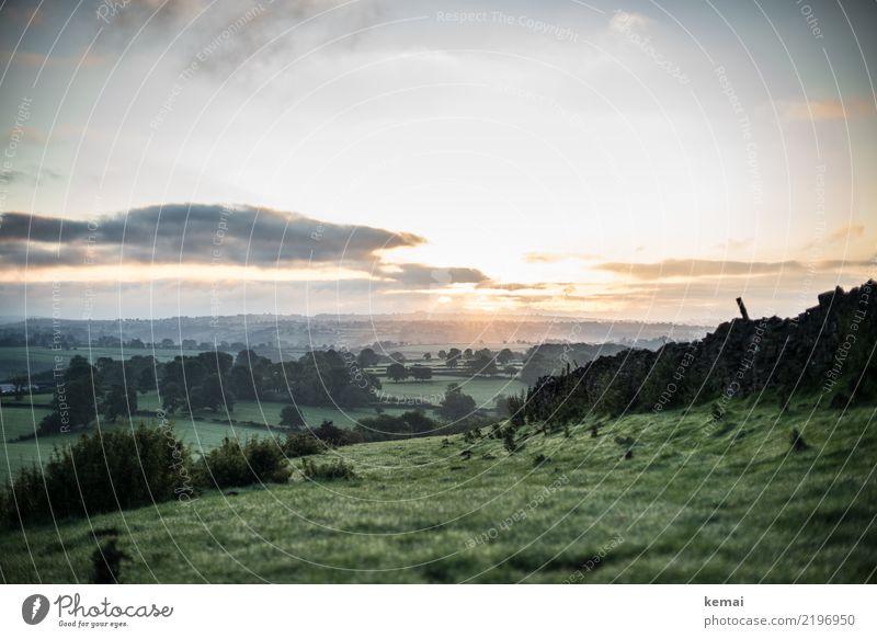 Es ist Morgen. harmonisch Wohlgefühl Zufriedenheit Sinnesorgane Erholung ruhig Freizeit & Hobby Ferien & Urlaub & Reisen Ausflug Abenteuer Ferne Freiheit Natur