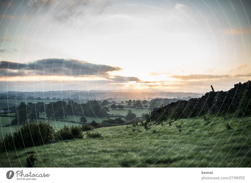 Es ist Morgen. Himmel Natur Ferien & Urlaub & Reisen Sommer grün Landschaft Baum Erholung Wolken ruhig Ferne Wand Wiese Gras Mauer Freiheit