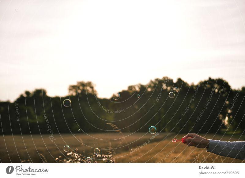Freiheit Spielen Seifenblase Sommer Sommerurlaub Arme Hand Kunst Natur Landschaft Luft Sonnenaufgang Sonnenuntergang Schönes Wetter Feld Wald Pullover Erholung