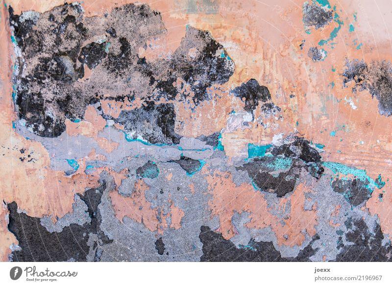 Wandmalerei Mauer alt hässlich blau grau rosa schwarz Senior Surrealismus Verfall Vergänglichkeit Wandel & Veränderung Putz Farbfoto Gedeckte Farben mehrfarbig