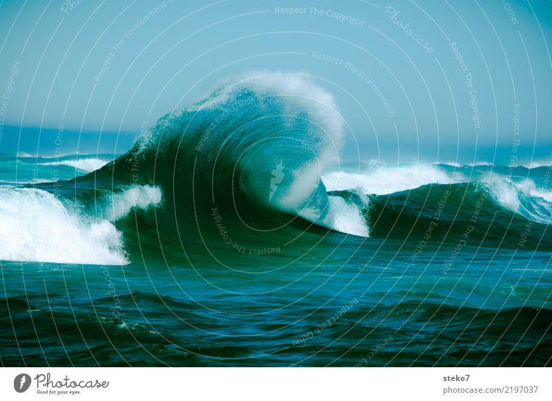 Welle frisch gekämmt Wasser Wellen Meer Pazifik maritim nass blau türkis Bewegung Energie Kraft Wellenkamm Gischt Dynamik spritzig Gedeckte Farben Außenaufnahme