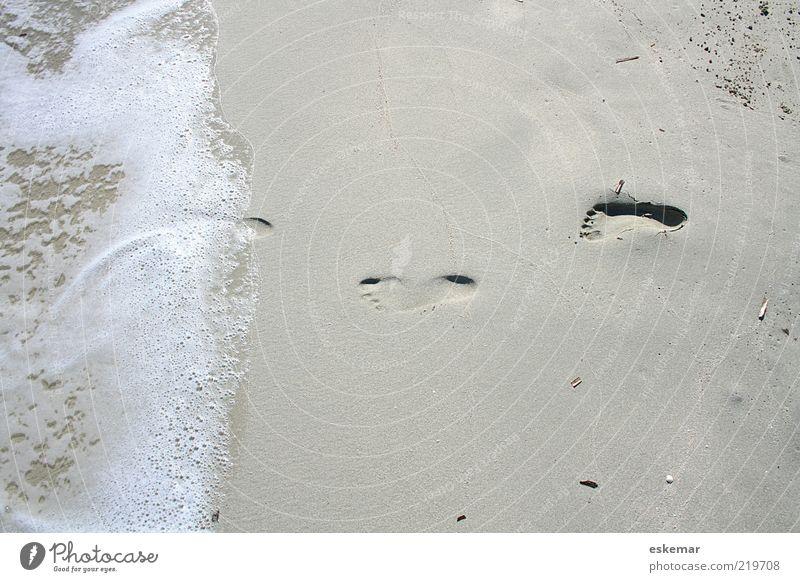 tapp tapp Natur Wasser Sommer Strand Meer ruhig Sand Wärme Insel Spuren Urelemente Fußspur Spanien harmonisch Schönes Wetter Schaum