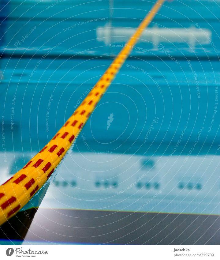 Baden gehen blau ruhig gelb Linie Seil Schwimmbad Schwimmsport Barriere Bahn Im Wasser treiben Wasseroberfläche Schwimmhalle Sportstätten Oberflächenspannung
