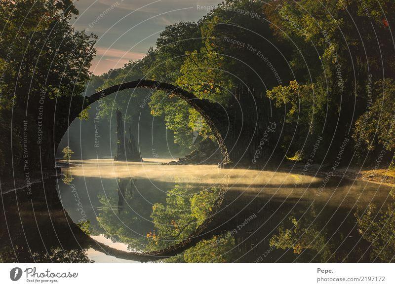 rakotzbrücke am morgen Natur alt Wasser Landschaft Herbst Stein wandern Nebel Brücke Seeufer Sehenswürdigkeit Naturschutzgebiet