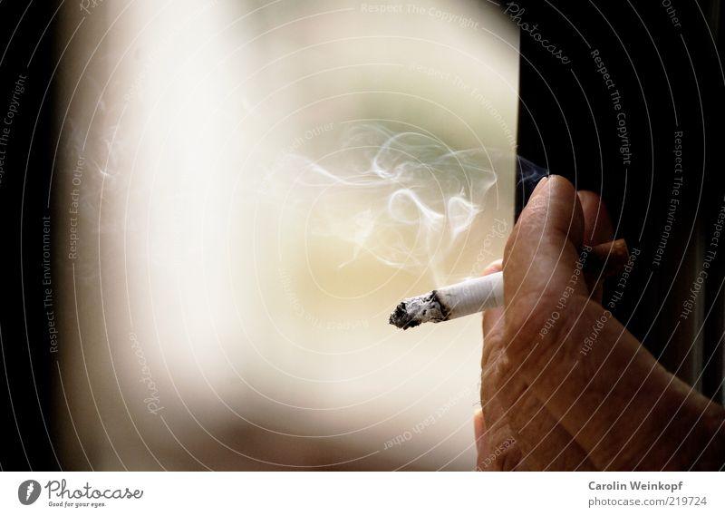 Smokin' Mensch Hand Einsamkeit Finger Pause Rauchen festhalten Krankheit Risiko Rauch brennen Zigarette Gift glühen Glut ungesund