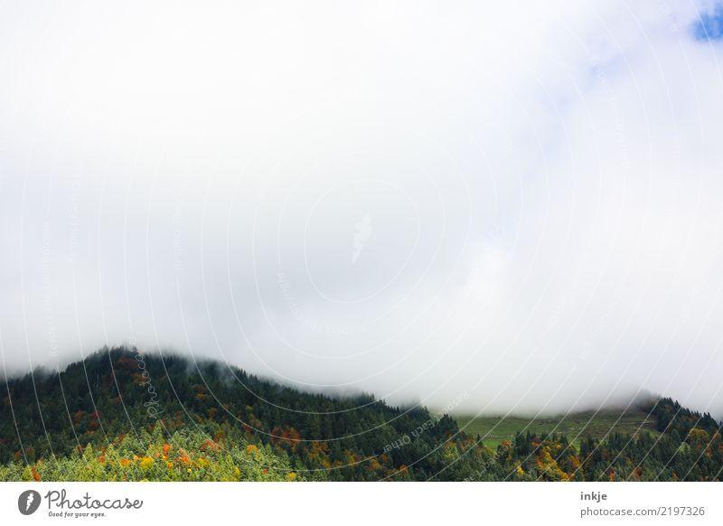 tiefhängende Wolken Natur Landschaft Tier Luft Himmel Frühling Sommer Herbst Nebel Wald Hügel Alpen Berge u. Gebirge Gipfel dunkel hell blau grün weiß Gefühle