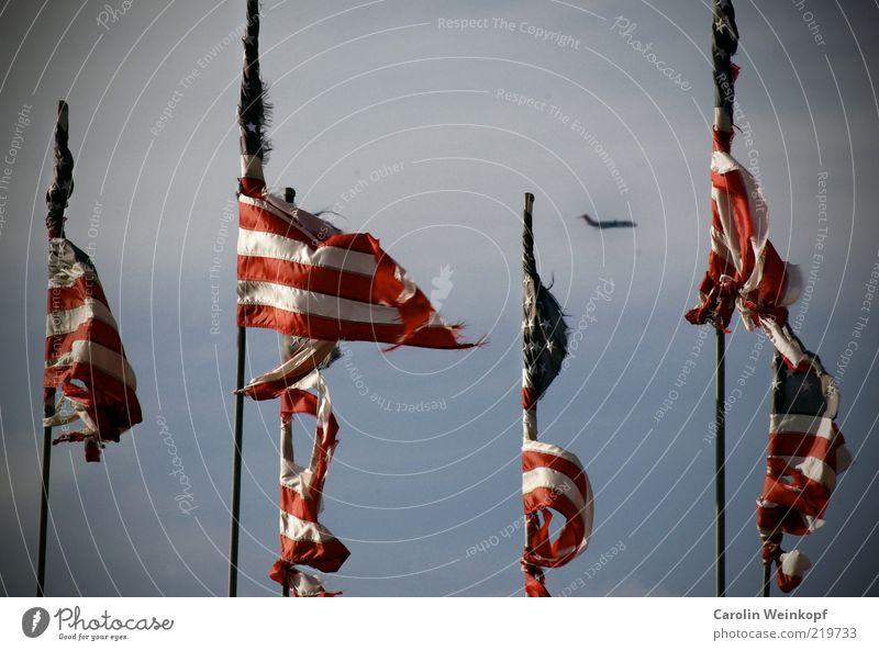 Land of the free. alt Himmel Bewegung Freiheit Flugzeug fliegen Verkehr ästhetisch Luftverkehr mehrere USA Fahne kaputt Zeichen Symbole & Metaphern Verkehrswege