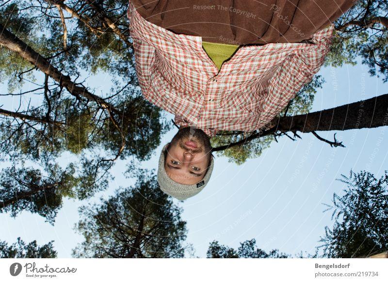 Sagt die Ameise zum Riesen Ferne Mensch Junger Mann Jugendliche Natur Wolkenloser Himmel Baum Wald Entschlossenheit grün oben unten klein groß Perspektive
