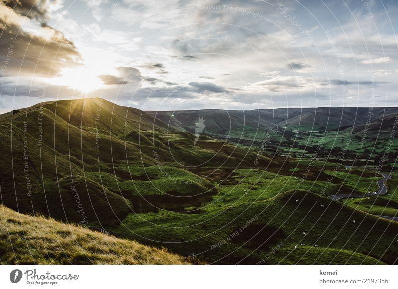 Hügel, Schafe und eine Traumstraße Himmel Natur Ferien & Urlaub & Reisen Sommer Landschaft Erholung Wolken ruhig Ferne dunkel Glück Gras Freiheit Ausflug