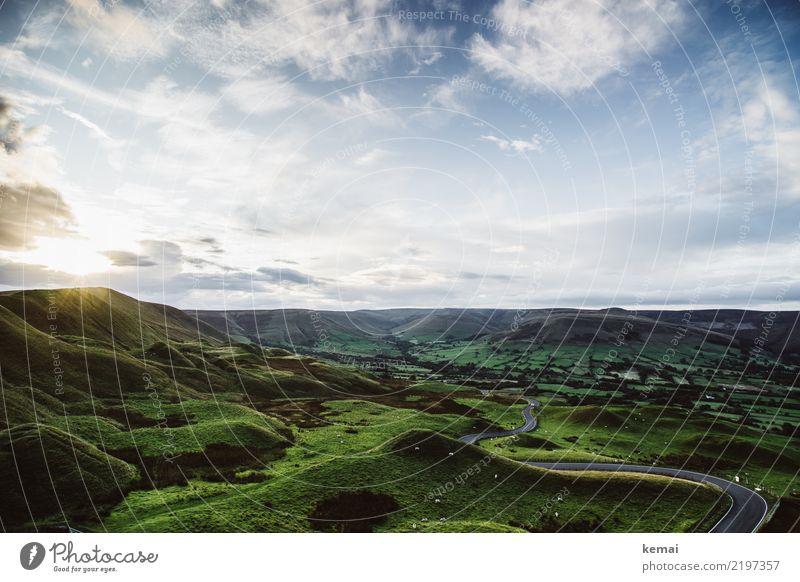 Hügel und Schafe und ein perfekter Abend harmonisch Wohlgefühl Zufriedenheit Sinnesorgane Erholung ruhig Freizeit & Hobby Ferien & Urlaub & Reisen Ausflug