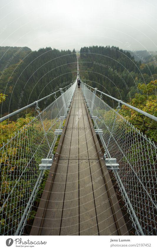 Geierlay Brücke - Mörsdorf Mensch Natur Ferien & Urlaub & Reisen grün Wald gelb Herbst Wege & Pfade Tourismus Menschengruppe grau braun Ausflug Freizeit & Hobby