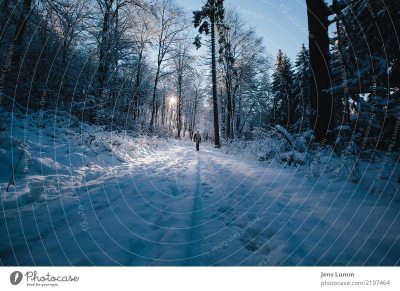 Next stop: Overlook Hotel Mensch Himmel Ferien & Urlaub & Reisen Mann blau weiß Landschaft Baum ruhig Winter Wald schwarz Erwachsene gelb kalt Wege & Pfade