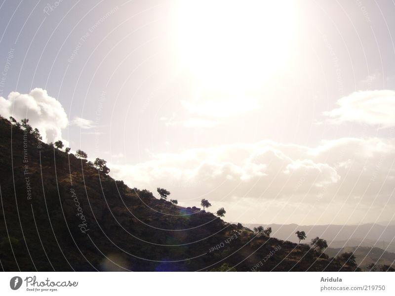 roca y sol harmonisch ruhig Berge u. Gebirge Umwelt Natur Landschaft Pflanze Luft Himmel Wolken Sonne Herbst Wetter Baum leuchten ästhetisch Ferne glänzend