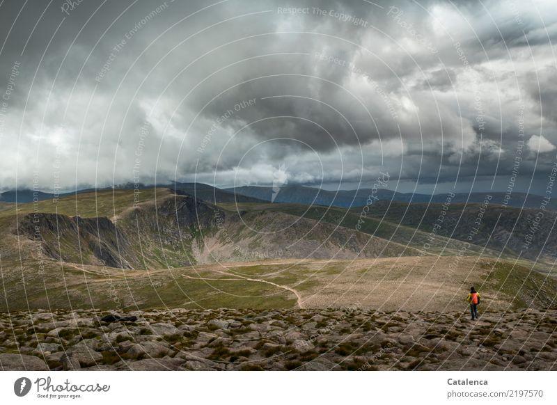 Wolkendach maskulin 1 Mensch Umwelt Natur Erde Gewitterwolken Sommer schlechtes Wetter Gras Hügel Felsen Berge u. Gebirge Nationalpark Wege & Pfade beobachten