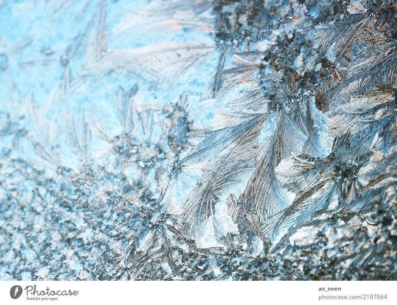 Kristallstruktur Natur blau Weihnachten & Advent weiß Winter Umwelt kalt Gefühle Schnee grau Wetter Eis glänzend ästhetisch Spitze Klima