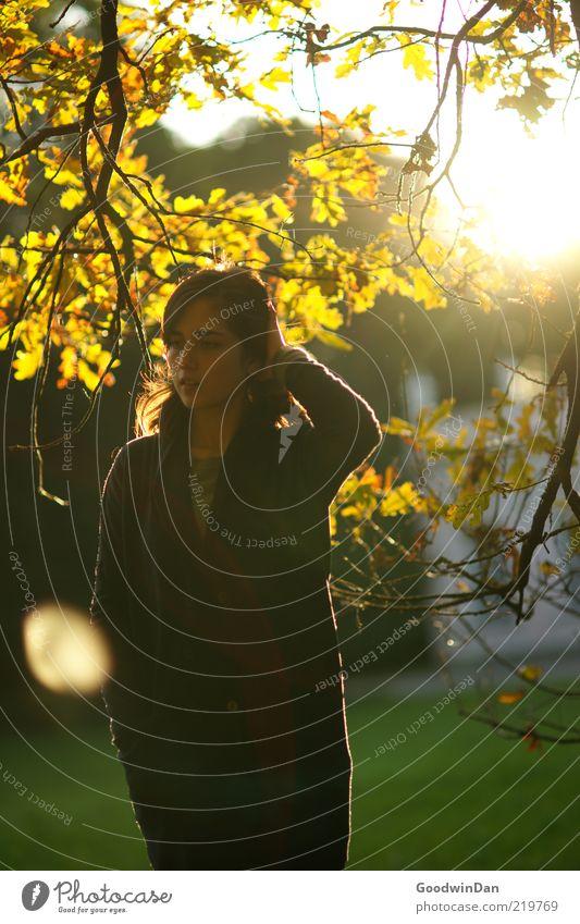 Und jetzt? Mensch feminin Junge Frau Jugendliche Erwachsene 1 Umwelt Natur Herbst Wetter Schönes Wetter Pflanze Baum Park Denken warten authentisch einfach nah