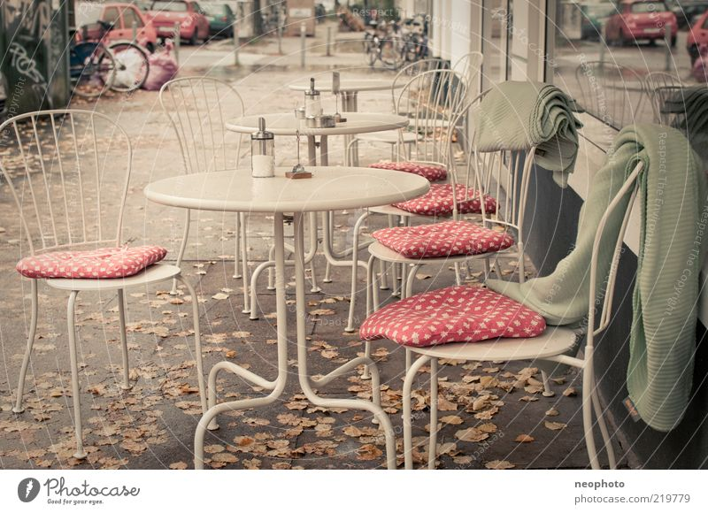 Pilzsaison Lifestyle Stuhl Erholung Dienstleistungsgewerbe Herbst Herbstlaub Café Decke gepunktet Gedeckte Farben Außenaufnahme Menschenleer Tag