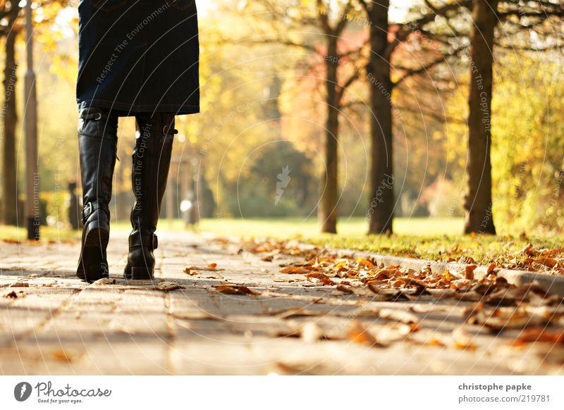 Going for a walk feminin Beine 1 Mensch Natur Herbst Baum Blatt Park Rock Stiefel Erholung gehen Traurigkeit Einsamkeit Farbfoto Außenaufnahme Tag