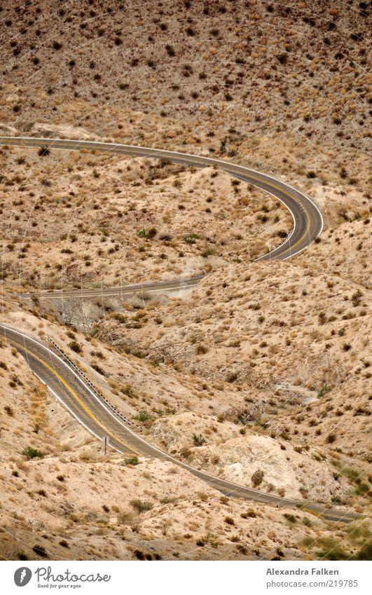Wilder Westen Umwelt Natur Landschaft Pflanze Erde Sand Wüste Verkehr Verkehrswege Straße Ferien & Urlaub & Reisen Kurve Serpentinen Kalifornien Einsamkeit