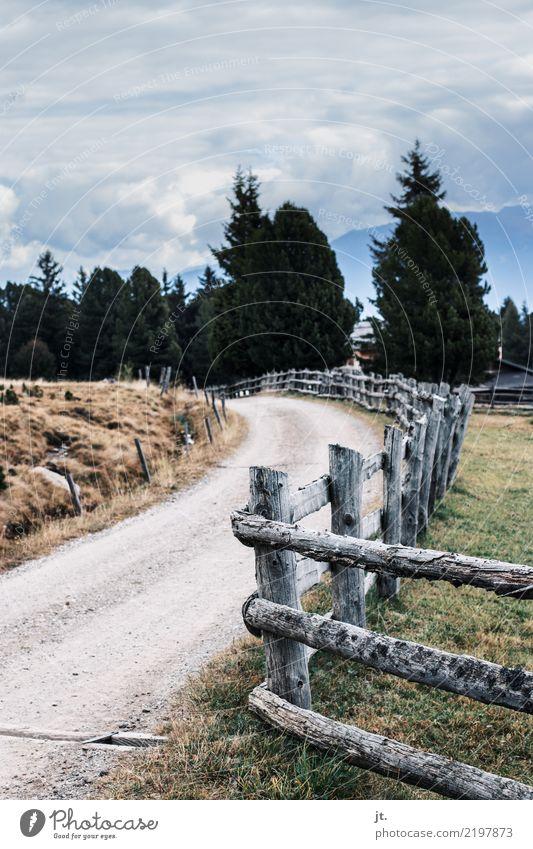 Wanderweg Himmel Natur Ferien & Urlaub & Reisen alt Landschaft Erholung ruhig Wald Berge u. Gebirge Tourismus Freizeit & Hobby wandern Zaun Fernweh