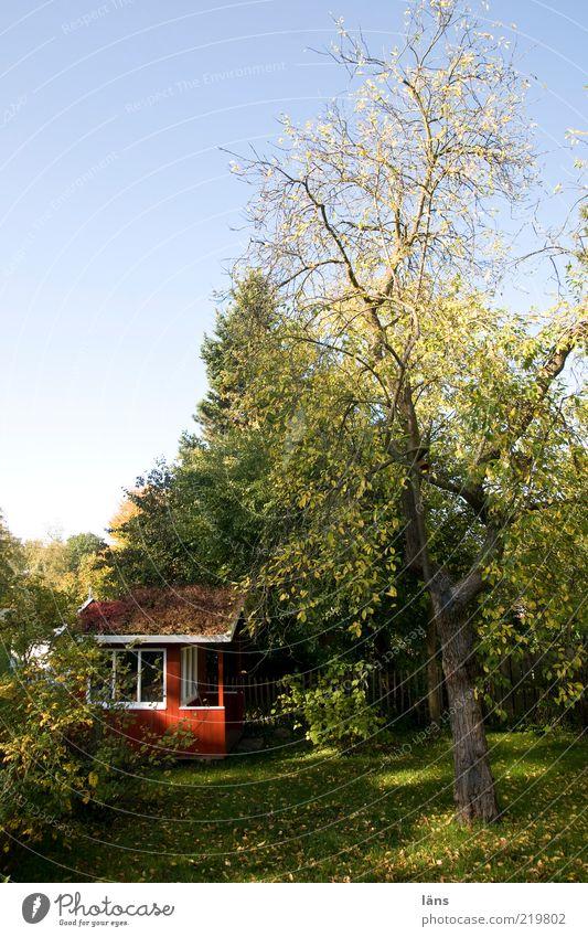 Garten Natur Himmel Baum grün Pflanze rot ruhig Erholung Wiese Herbst Fenster Umwelt Rasen Sträucher