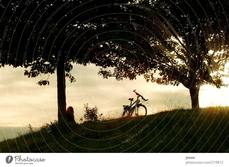 Zeit Mensch Himmel Natur weiß Baum Sommer Wolken schwarz ruhig Erholung Ferne Landschaft gelb Wiese Wärme Traurigkeit