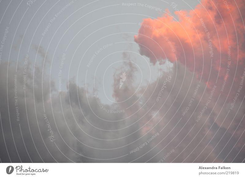 Wolke brennt. schön Himmel Wolken Umwelt ästhetisch Klima Fernweh Hölle Ewigkeit Licht Natur Wolkenhimmel Wolkendecke Wolkenfeld Wolkenbild nur Himmel
