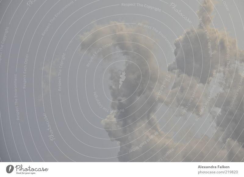 Wolken Umwelt Natur Himmel Klima ästhetisch kalt grau Farbfoto Gedeckte Farben Menschenleer Textfreiraum links Textfreiraum oben Textfreiraum unten Dämmerung