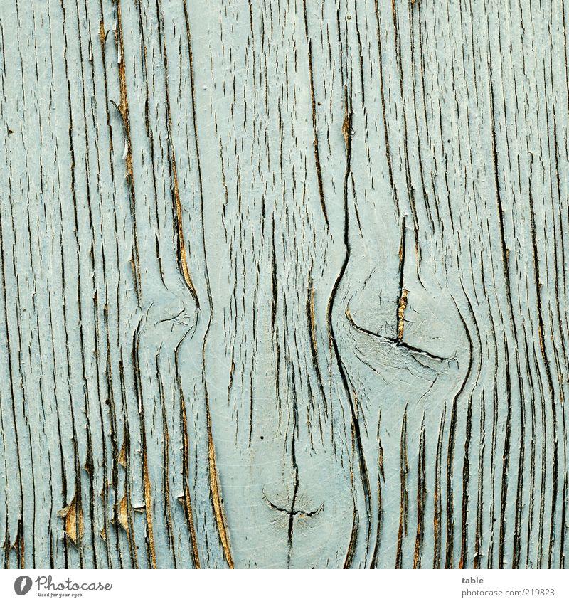 Holzgesicht alt blau Gesicht Farbstoff Wandel & Veränderung Vergänglichkeit außergewöhnlich Symbole & Metaphern Holzbrett Maserung verwittert Anstrich hell-blau