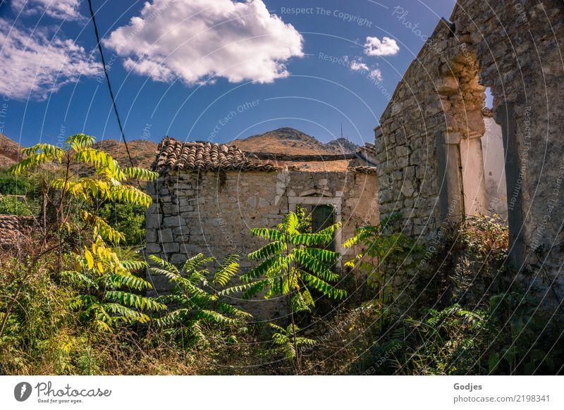 Old Perithia Natur Pflanze Himmel Wolken Sommer Gras Sträucher Wildpflanze Berge u. Gebirge Korfu Dorf Menschenleer Haus Ruine Gebäude Mauer Wand Fenster Tür