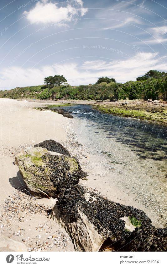 Aber-Fluss Natur Wasser Baum Sommer Wolken Ferne Sand Landschaft Felsen Erde Perspektive einzigartig wild fantastisch Idylle Bucht