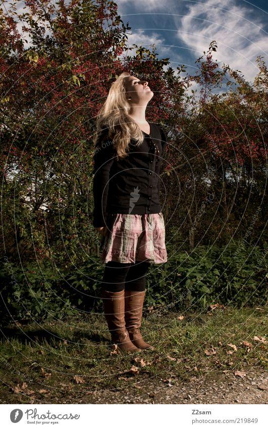 sonne tanken Mensch Jugendliche ruhig Blatt Leben Erholung Herbst feminin Stil Glück Landschaft Zufriedenheit blond Erwachsene Lifestyle