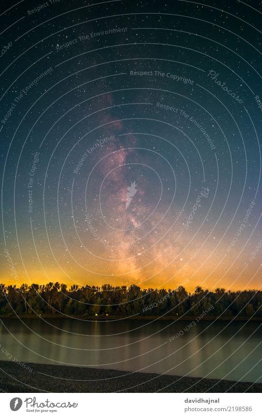Rhein Wissenschaften Astronomie Natur Landschaft Wasser Himmel Wolkenloser Himmel Nachthimmel Stern Horizont Herbst Schönes Wetter Baum Wald Flussufer