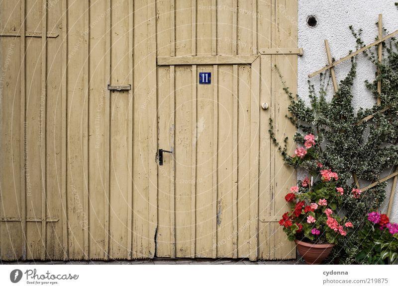 Dorfidylle schön Blume ruhig Leben Wand Mauer Architektur Tür Schilder & Markierungen geschlossen Lifestyle ästhetisch Autotür Häusliches Leben einzigartig