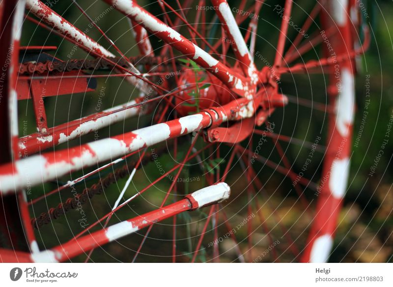 jenseits des Mainstreams | speziell Fahrrad Fahrradständer Speichen Fahrradkette Fahrradnabe Metall stehen alt außergewöhnlich einzigartig braun grün rot weiß