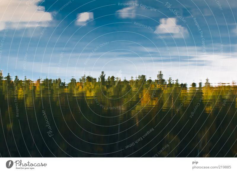 herbstferien Natur Wasser Himmel Baum Ferien & Urlaub & Reisen ruhig Blatt Wolken Wald Herbst See Wellen nass Langeweile Urelemente Schönes Wetter