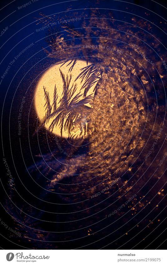 kühler Mond Natur blau Stadt Erotik Einsamkeit Winter dunkel schwarz kalt Kunst orange Häusliches Leben leuchten Eis Klima Coolness
