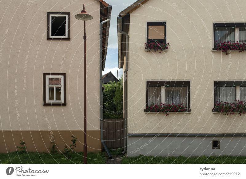 Zwischenraum ruhig Haus Leben Fenster Zusammensein Fassade Lifestyle nah Häusliches Leben einzigartig Dorf Idylle Gesellschaft (Soziologie) eng gemütlich